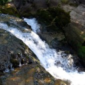 Районът е особено богат на извори, чиста вода и огромно количество зеленина.